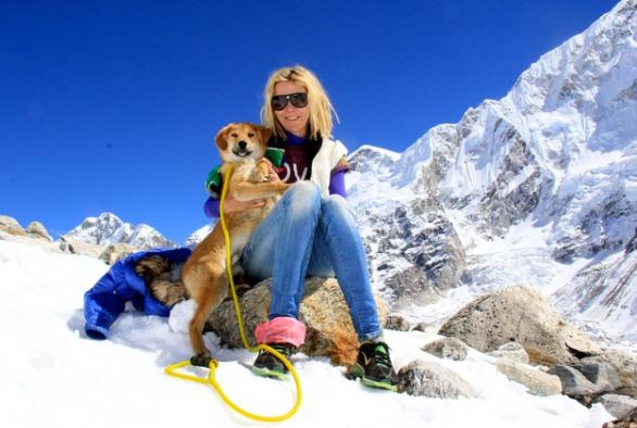 世界初!エベレストに登った救助犬!
