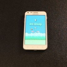Flappy-Bird-crash