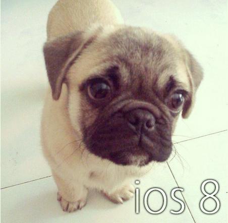 iGameGuardian 7 がリリースし iOS 6, iOS 7, iOS 8に対応。購入からインストールまでの流れなど。