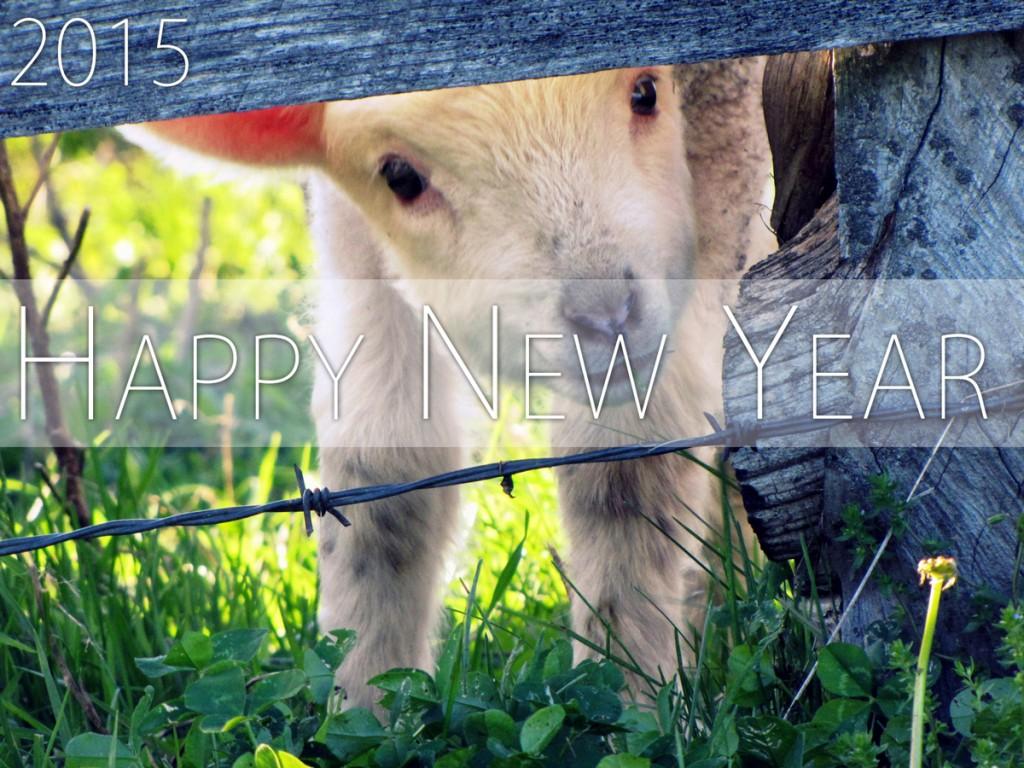 新年のご挨拶(2015年)